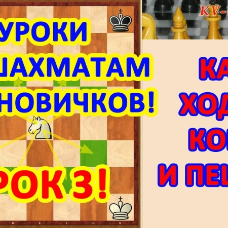 Обучение шахматам начинающих. Урок 3 - Как ходят конь и пешка.
