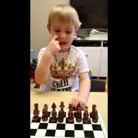 Шахматы для детей - По краям стоят ладьи...